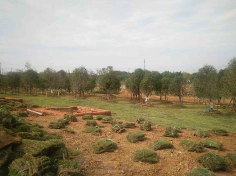 农场实景2