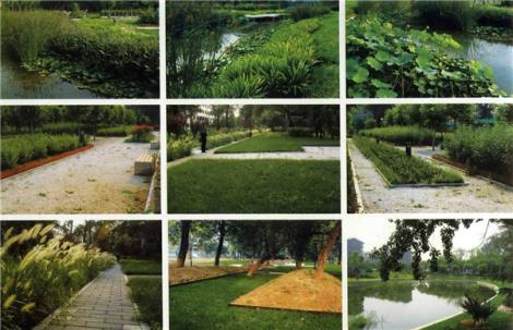 金坛园林绿化工程