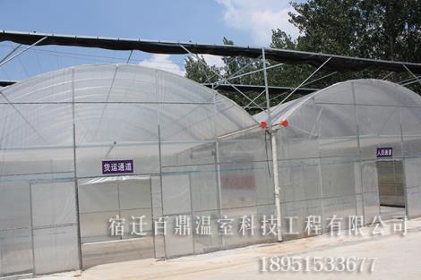 农业生态园大棚