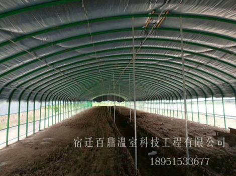 农业养殖大棚
