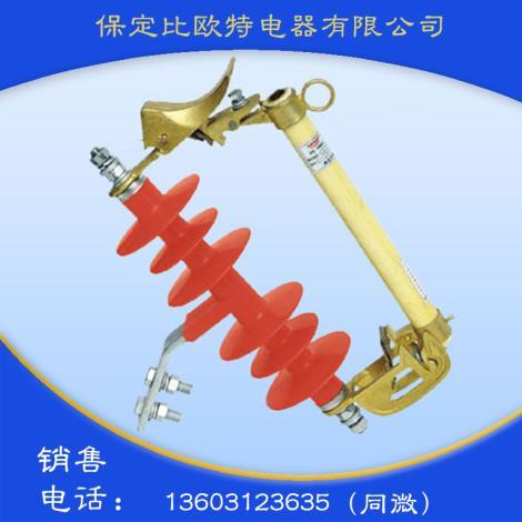 RW3-10Kv户外跌落式熔断器(1...